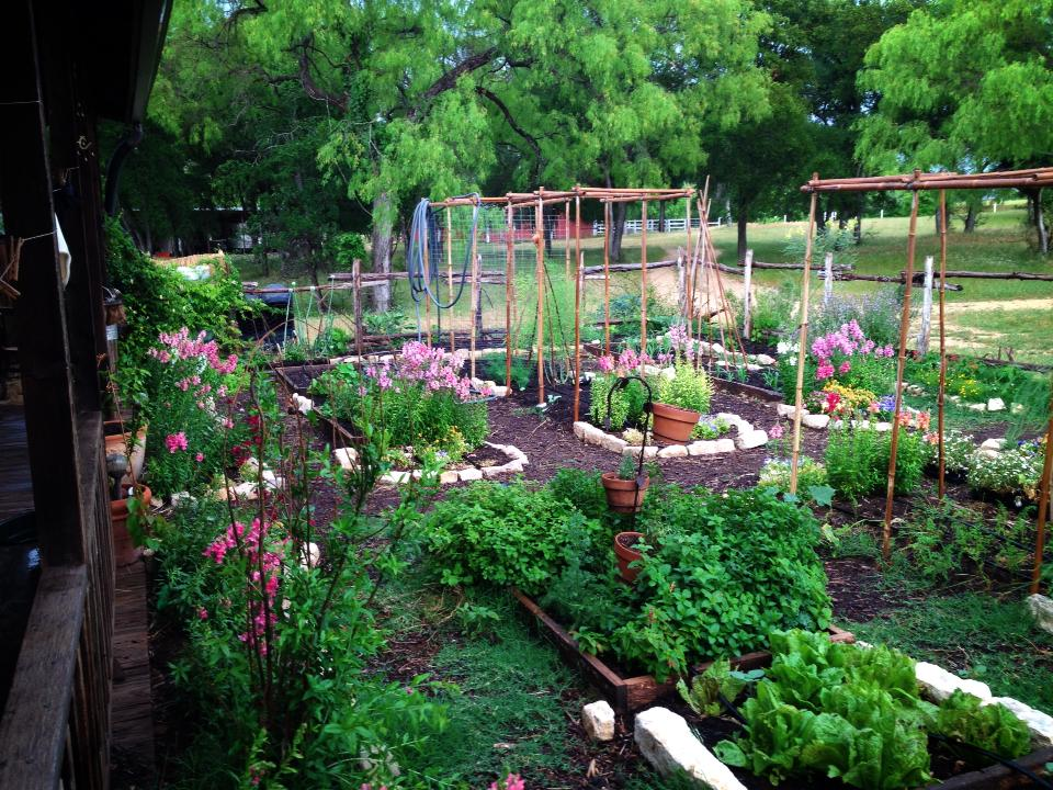 This garden highly productive and provides so much joy throughout the year! I installed the drip irrigation so they can take vacation without worrying the garden will get too dry.
