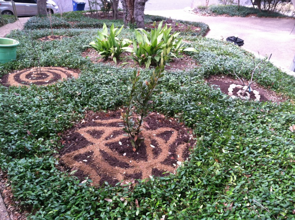 A front yard Food Forest in Austin.
